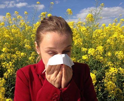 allergie ai pollini
